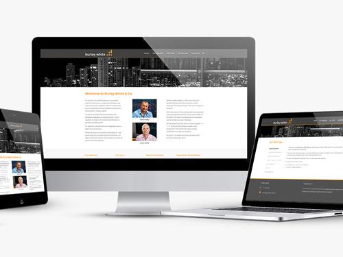 Burley White & Co Website